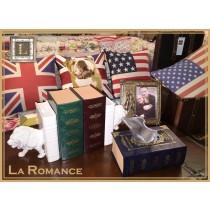 【芮洛蔓 La Romance】 典雅書盒造型面紙盒